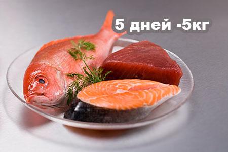 Белковая диета на 5 дней – минус 5 кг