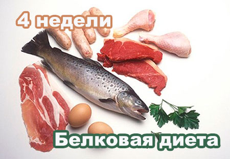 белковая диета на 4 недели
