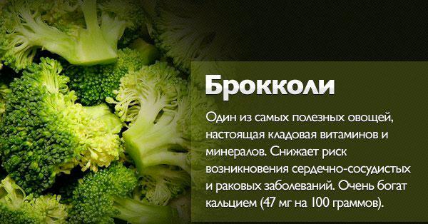 свойства брокколи