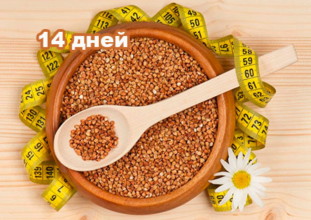 Гречневая диета на 14 дней